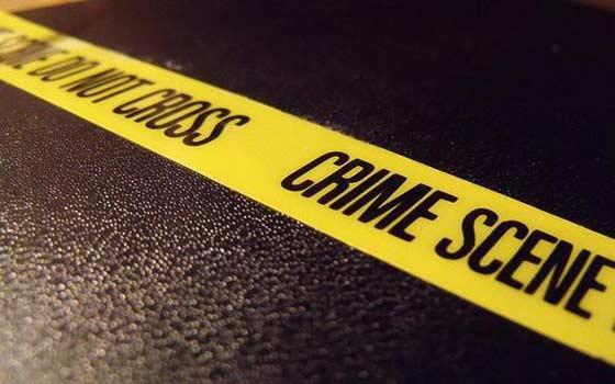 Curso online de Criminal Profiling: en la Mente del Asesino en Serie