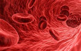 Hematología Clínica