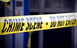 Pack 3 cursos online de Criminalística: Escena del Crimen + Criminal Profiling + Medicina Legal y Toxicología