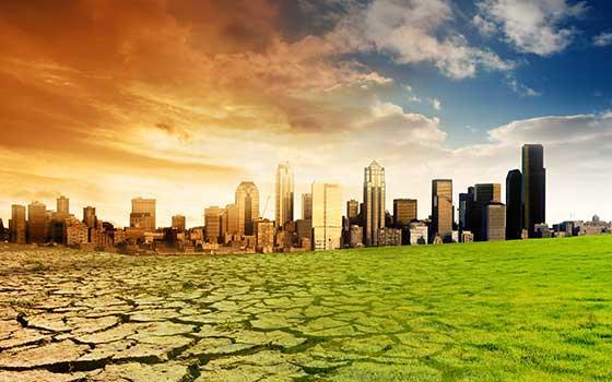 Curso online de Sensibilización Medioambiental (Titulación Universitaria)