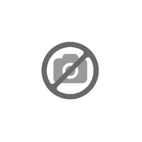Grado Logopedia